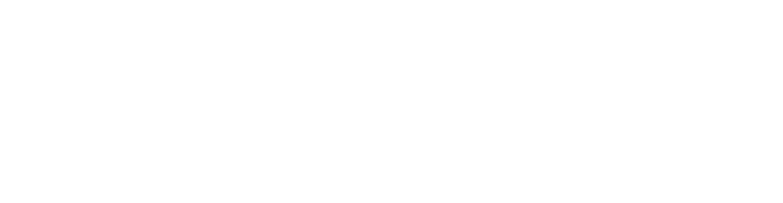 Dillon Manufacturing Logo